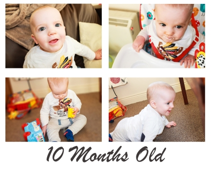 10monthsold